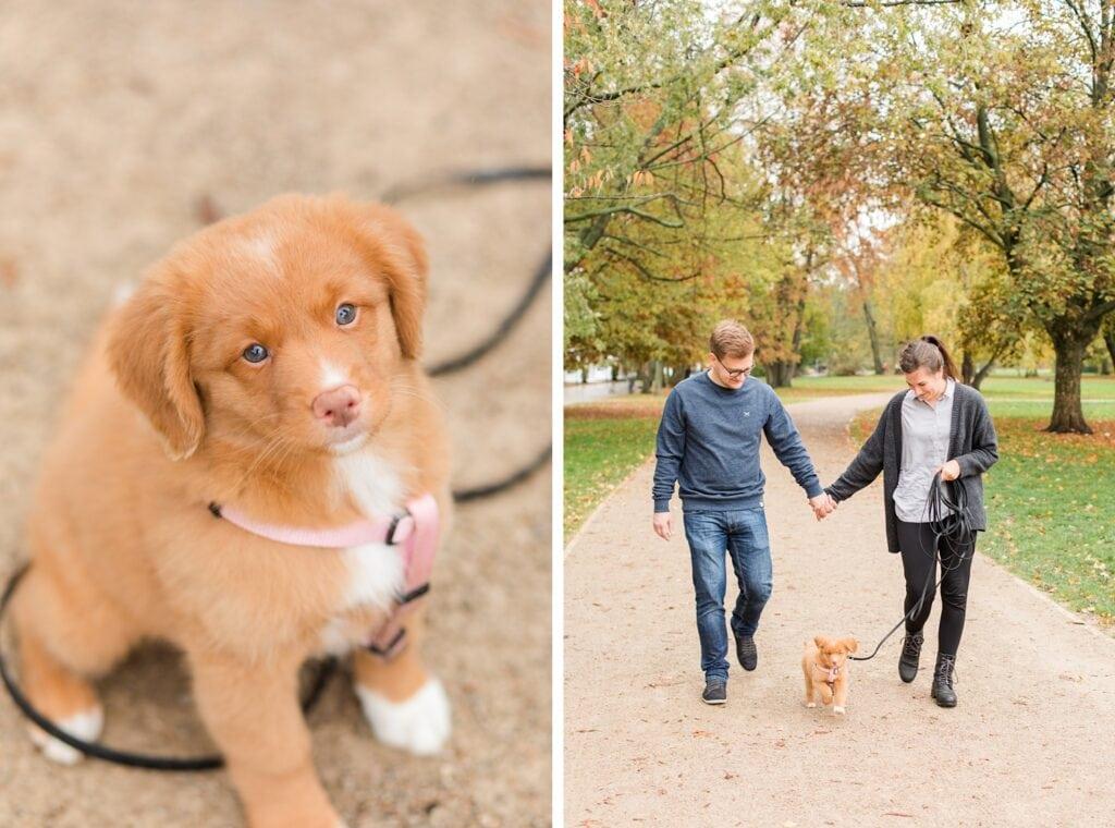 Herbstliche Familienfotos mit Toller Welpen in Berlin