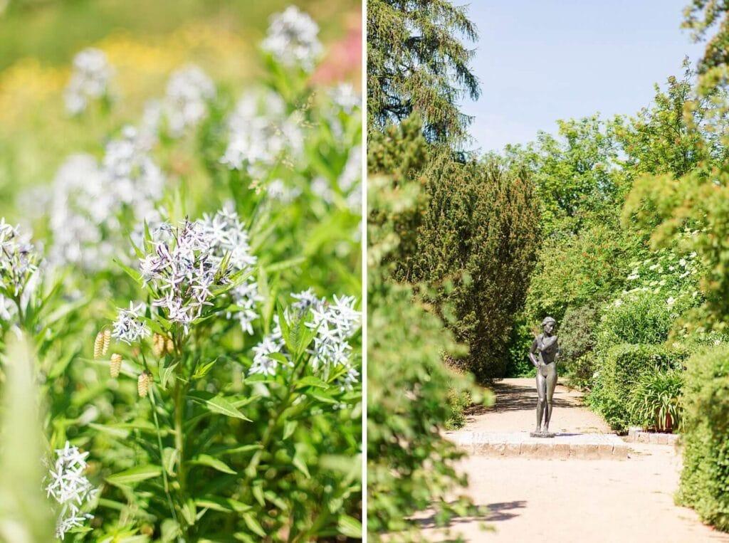 Nahaufnahme einer blauen Blume und eine Statue im Park