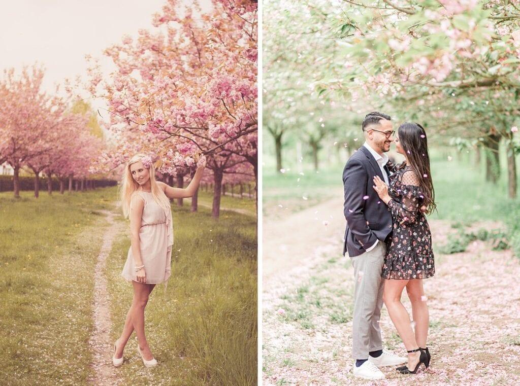 Kirschblütenfotos vorher nachher