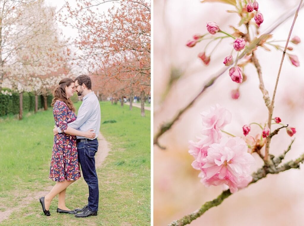 Paar umarmt sich unter Kirschblüten