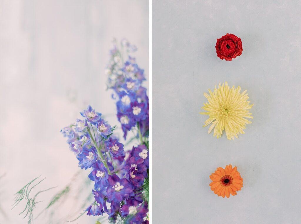 Blumen vor blauem Hintergrund